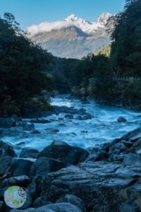 milford_sound_on_the_road