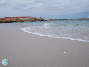 bay_of_fire_2